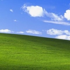 Image of the default Windows XP wallpaper
